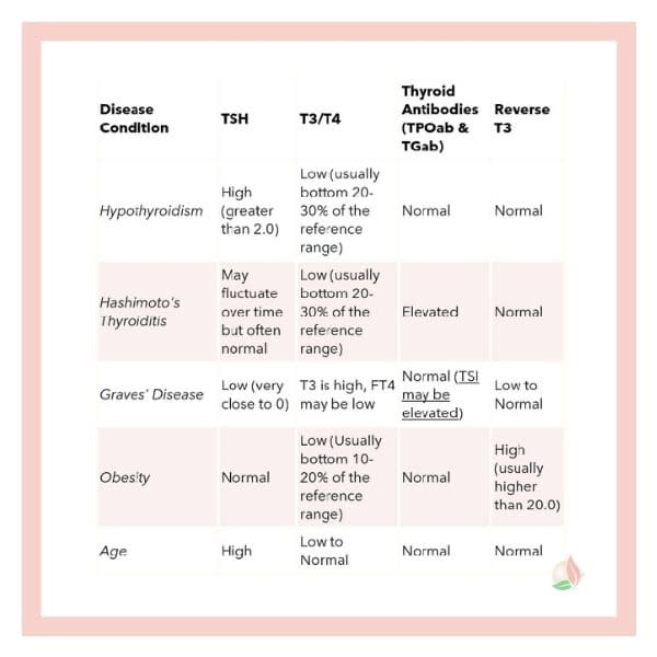 Understanding your Thyroid Labs